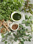 Coriander pesto, coriander seeds and rolls