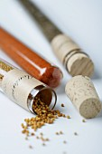 Test tubes with assorted spices (sweet paprika, mint and mustard seeds)