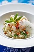 Purslane risotto with langoustine