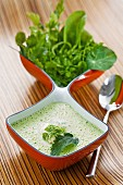 Herb soup with nettles, watercress, chervil, sorrel and chickweed