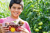 A boy holding a basket of heirloom tomatoes