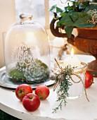 Brennende Kerze mit Weihnachtsdeko neben Äpfeln und Pflanzen in verschiedenen Behältern