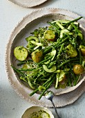 Potato and bean salad with cucumber, edible shoots, celery and pesto