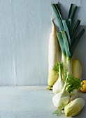Ingredients for a vegetable salad: chicory, fennel, leek, radish