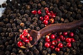 Red and black peppercorns