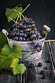 Black grapes with vine leaves in a zinc bucket