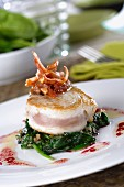 Tuna steak on spinach with a radish vinaigrette and meat salsa