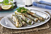 Navajas a la plancha (Grilled razor clams with garlic and parsley, Spanien)
