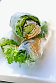 Rice paper rolls filled with tofu, lettuce and cucumber (Asia)