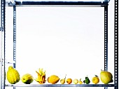 Assorted varieties of lemon on a metal shelf