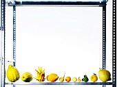 Assorted varieties of lemon on a metal shelf