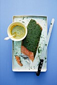 Gravad lax with a dill sauce