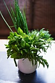 A bouquet of herbs including mint, tarragon, dill and chives