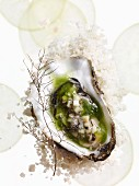 Tartare of Maldon wild oyster with apple, cucumber and dried fennel