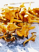 Chantarelles on a newspaper, close-up.