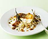 Fish fillet on rice with rosemary and garlic