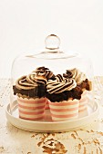 Mini chocolate cakes, made without egg, under a glass cloche
