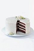 Chocolate cream layer cake with sugared daisies and mint (slices cut)