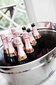 Champagne bottles in ice bucket
