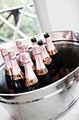 Champagne bottles in ice bucket