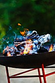 Burning wood in barbecue grill
