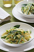 Garganelli pasta with sparrow-grasses, broad beans and Pecorino cheese, Italy