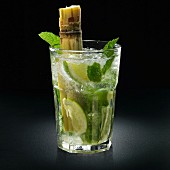 Mojito campesino cocktail