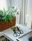 Wicker basket of kitchen herbs on windowsill