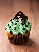 Chocolate cupcake with mint icing