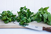 Three bunches of fresh herbs
