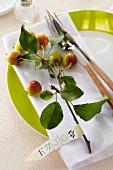Zierapfelast auf Teller mit Schiftzug 'Enjoy' als Tischdekoration