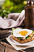 Fried egg with champignons and shrimps on the toast.