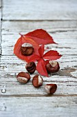 Chestnuts and red leaves on a wooden surface