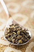 Dried oolong tea on a spoon