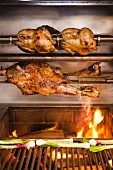 Rotisserie Chicken and Turkey Cooking