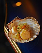 Scallops with jelly and thyme in a scallop shell