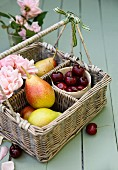 A basket of fresh pears, cherries and roses