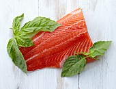 A Fresh Filet of Salmon with Fresh Basil Leaves