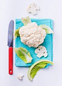 Cauliflower on a turquoise cloth, with a knife to one side