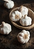 Garlic Bulbs with Stems and Roots