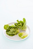 Lettuce on a White Plate