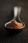 Cocoa powder in a porcelain spoon