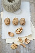 Walnuts, whole and cracked, on a piece of cloth with a roll of twine