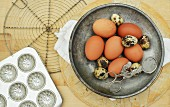 qualis and chicken eggs in a metal bowl with vintage baking equipment on a wooden chopping board