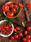 Assorted ripe tomatoes in bowls and on a wooden board