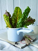 Chard leaves in a saucepan on a chopping board
