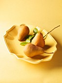 Pears with Leaves in a Shallow Yellow Bowl