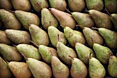 Lots of pears at the market