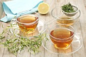 Savory tea and fresh savory
