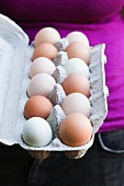 Farm Fresh Multi-Color Eggs